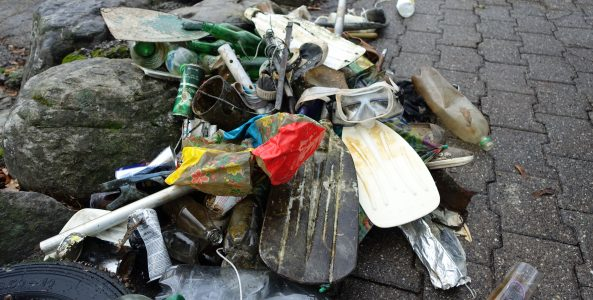 Clean up day 2021 – by divefactory